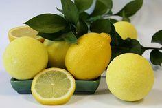 Полезные свойства и вред лимона для организма