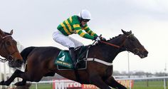 Darlan, a leading contender for this years Champion Hurdle has sadly died after a fall at the last fence at Doncaster. Jockey AP McCoy was unhurt but visibly shaken by the sad loss. Hurdles, Thoroughbred, Horse Racing, Champion Hurdle, Fall, Sports, Jumpers, Animals, Fence