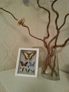 DIY butterfly board