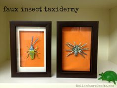Faux Insect Taxidermy
