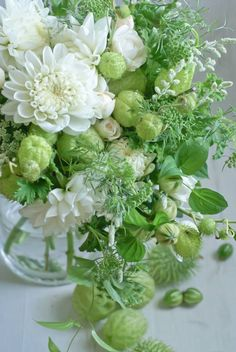Decore com Gigi Flowers Nature, Exotic Flowers, Green Flowers, Small Flowers, Love Flowers, Spring Flowers, White Flowers, Beautiful Flowers, Small Flower Arrangements