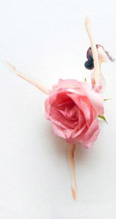 Rose as her TUTU. ❤                                                 …