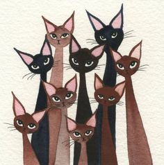 Frankfort Stray Cats - Lori Alexander