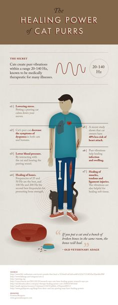 Frequency and vibration - the right ones heal, even the ones from kitties. :)