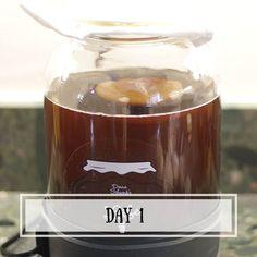 Eight Days With Kombucha
