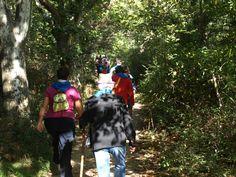 Ruta por Cercedilla a favor de ONGAWA el día 5 de octubre.