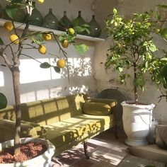 Interior design is the best thing you can do for your home My New Room, My Room, Room Art, Interior Exterior, Interior Design, Design Interiors, Dream Apartment, Aesthetic Rooms, Outdoor Furniture Sets
