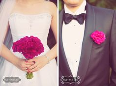 Fuksjowe goździki/ Fuchsia carnations