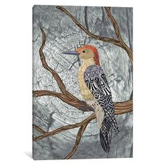 "East Urban Home Woodpecker Graphic Art on Wrapped Canvas Size: 26"" H x 18"" W x 1.5"" D"
