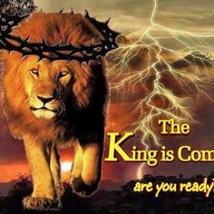 MY KING IS COMING, HIS BRIDE IS READY...................