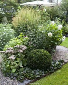 To plan a garden design that you will love, it is important to do some research and brainstorming before digging. Coming up with the right garden design does take time, so it is worth doing this up front. Amazing Gardens, Beautiful Gardens, Edging Plants, Vintage Garden Decor, Pot Plante, Flower Landscape, Terrace Garden, Shade Garden, Flower Beds