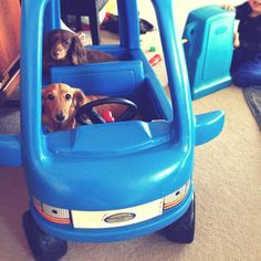 お友達に譲ってもらった足こぎ車にチクタク乗せてガソリン入れて楽しそうー! - @cockycocky- #webstagram