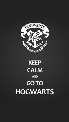 64 Ideas birthday meme harry potter hogwarts for 2019 Harry Potter Tumblr, Harry Potter World, Arte Do Harry Potter, Harry Potter Pictures, Harry Potter Quotes, Harry Potter Books, Harry Potter Love, Harry Potter Universal, Harry Potter Fandom