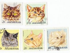 stamps2 by lauren doughty, via Flickr
