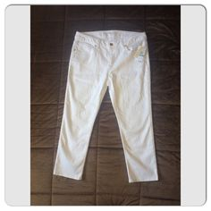M I C H A E L  K O R S New with Tags Michael Kors Basic Skinny Stretch Jeans with Gold Accents   Size: 8   MSRP: $110.00   ·         Zip fly with button closure  ·         Five-pocket style  ·         Metal gold plated logo pocket detail  ·         98% cotton, 2% spandex.  Comes from a smoke free environment Michael Kors Jeans