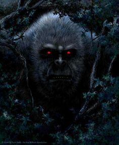 1000+ images about Bigfoot on Pinterest | Paranormal, Ufo Sighting ...