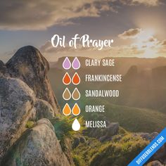 Diffuser blends Oil of Prayer - Essential Oil Diffuser Blend Discover The Huntington Library, Art Co Essential Oils 101, Essential Oil Perfume, Essential Oil Diffuser Blends, Young Living Essential Oils, Essential Oil Combinations, Aromatherapy Oils, Prayer, Huntington Library, Remedies