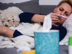 Nach Schweinegrippe und Vogelgrippe droht uns bald die tödliche Hundegripe! #gesundheit #gesund #krankheit #kinder #hunde #haustier