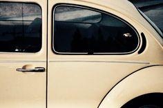 Bee, the car.