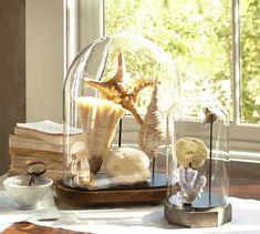 Shell Cloches | Pottery Barn