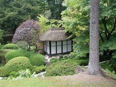 guttae: Japanese Garden, Tatton Park