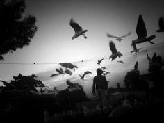 Misho Baranovic | Street Photography | Footscray, Melbourne