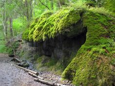 "The Wutachschlucht (the spectacular ""Wutach Gorge"") is a section of the Gorge Trail and a popular hiking trail in southern Black Forest, Germany."