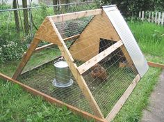Positively Dreamy Chicken Coops