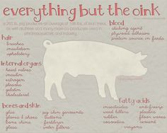 Pigs have always fascinated me. They're smarter than most people assume (you can almost train them like dogs), are healthier to eat then many other meats (that's another post though) and by golly, can you get some wacky products from them! #agvocate http://factorhogwash.blogspot.com