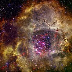 Rosette Nebula (NASA, Chandra) by NASA's Marshall Space Flight Center
