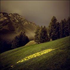 light installation by Barry Underwood
