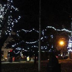 Advent u Osijeku u večernjim satima 2017.god.(80)