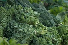 Popular Types of Kale and Their Health Benefits - One Green PlanetOne Green Planet Delicious Vegan Recipes, Raw Food Recipes, Kale Recipes, Tasty, Types Of Kale, Vegan Potluck, Vegan Dishes, Healthy Dishes, Vegan Food