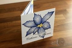 Christmas Wedding Invitation - Holly in a frosty blue colour scheme