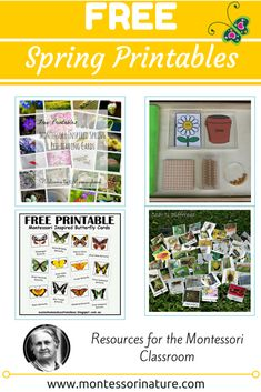Spring brings such a great variety of opportunities for learning and new discoveries. I chose printables that are clear, attractive for children, educational, have 3 part and nomenclature cards, informative, and are a great tool for teachers to use with their children. Many of these were made specifically  to use in the Montessori classroom. FREE …