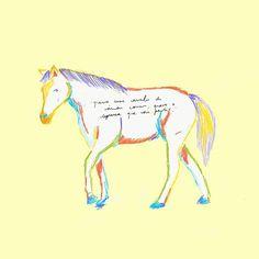 """""""Antes que murchem todas as flores.Tenho a loucura, sei o caminho,Mas como posso partir sozinhoSem um cavalo de várias cores?""""............#illustration #illustrationgram #drawing #drawinglife #peoplescreatives #darlingmovement #darlingweekend #thatsdarling #doodle #poema #horse #colorfull #color #yellow #mybeautifulmess #missphips #gerador #oh_mag #wip #vsco #vscocam #igers #poema"""
