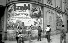 Bambi, cine Callao