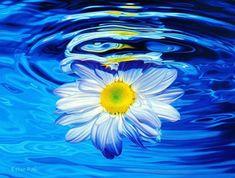 Ester Roi | Artwork | Beneath the Blue