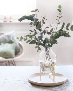 Fresh flowers or branches can not be missing in any home. Diy Wedding Flowers, Diy Flowers, Flower Vases, Fresh Flowers, Fresco, Diy Pillows, Decorative Pillows, Living Room Designs, Living Room Decor