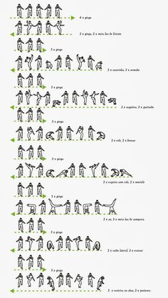 Basic movements of capoeira - 4                                                                                                                                                                                 Plus