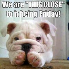 It's almost Thursday! Have a great day, Friday is almost here! :)