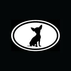 Chihuahua-White-Oval-Sticker-Dog-Breed-Puppy-Euro-Vinyl-Decal-Cute-Car-Window