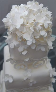 Beautiful White Hydrangeas  - Daisy Chain Cake Company Ltd