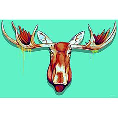@Overstock.com - Maxwell Dickson 'Moose Head' Canvas Wall Art - Create a unique space with this piece of comical canvas wall art. This Moose Head by Maxwell Dickson is a large gallery-wrapped canvas that resembles a mounted trophy with a contemporary, illustrated look and a trendy seafoam-green background.  http://www.overstock.com/Home-Garden/Maxwell-Dickson-Moose-Head-Canvas-Wall-Art/6595728/product.html?CID=214117 $53.99