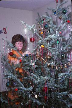 Christmas Tree Timer Walmart much Christmas Movies For Kids one Christmas Hallma. Christmas Tree T Kids Christmas Movies, Real Christmas Tree, Old Fashioned Christmas, Merry Little Christmas, Christmas Past, Christmas Lights, Christmas Holidays, Christmas Decorations, Xmas Trees