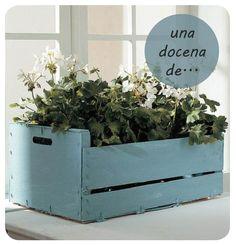 macetero caja de fruta, fruit box planter DIY