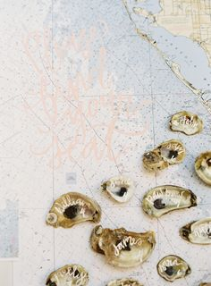 nautical escort cards using oyster shells Wedding Pics, Chic Wedding, Wedding Details, Wedding Ideas, Wedding Themes, Perfect Wedding, Fall Wedding, Wedding Reception, Coastal Wedding Inspiration