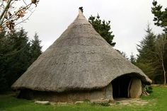 Building a roundhouse.