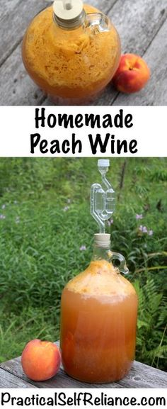 Homemade Peach Wine Recipe To produce wines, the kiwi tend to be primary collected from Homemade Peach Wine Recipe, Homemade Alcohol, Homemade Liquor, Homemade Liqueur Recipes, Homemade Cider, Homemade Gifts, Mead Wine, Mead Recipe, Peach Juice