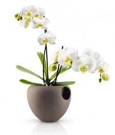 Gagnez le pot à orchidée by Eva Solo #deco #design #evasolo #blogdeco